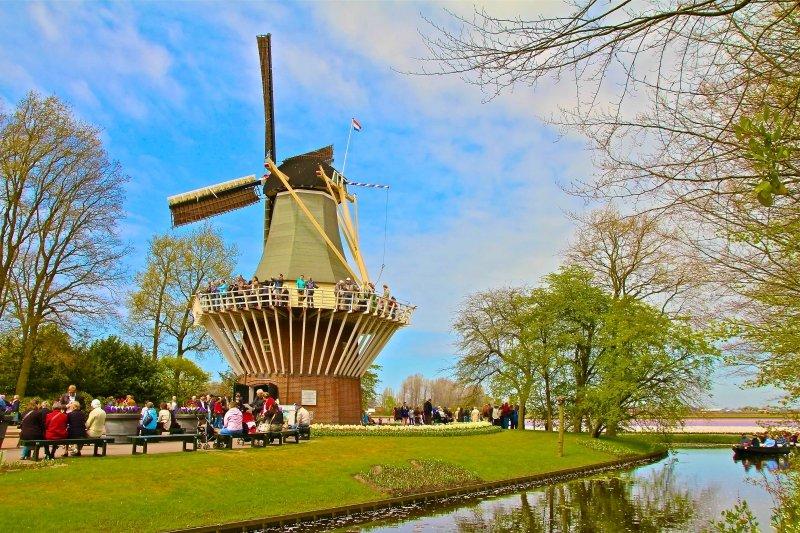 Keukenhof-Gardens como visitar o jardim de tulipas na Holanda turismo Amsterdam viagem dicas passeios lisse