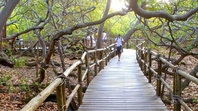 Rio Grande do Norte o que fazer dicas viagem férias Natal nordeste melhores praias
