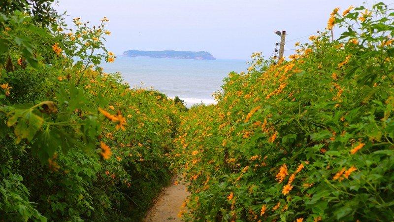 Florianópolis o que fazer dicas praias pontos turísticos ilhas Santa Catarina férias viagem hotel pousadas hotéis turismo passeios Praia Mole