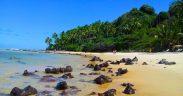 Melhores praias do RN - Praias mais bonitas do Rio Grande do Norte