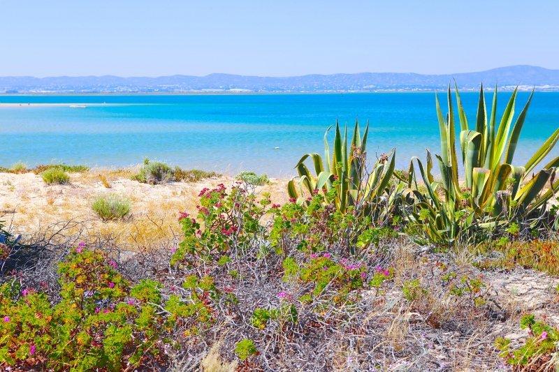 melhores praias do Algarve, praias mais bonitas do algarve