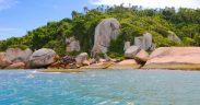 O que fazer na Ilha do Campeche - Como chegar - O que visitar no Campeche - Trilhas na Ilha do Campeche em Florianópolis - Santa Catarina